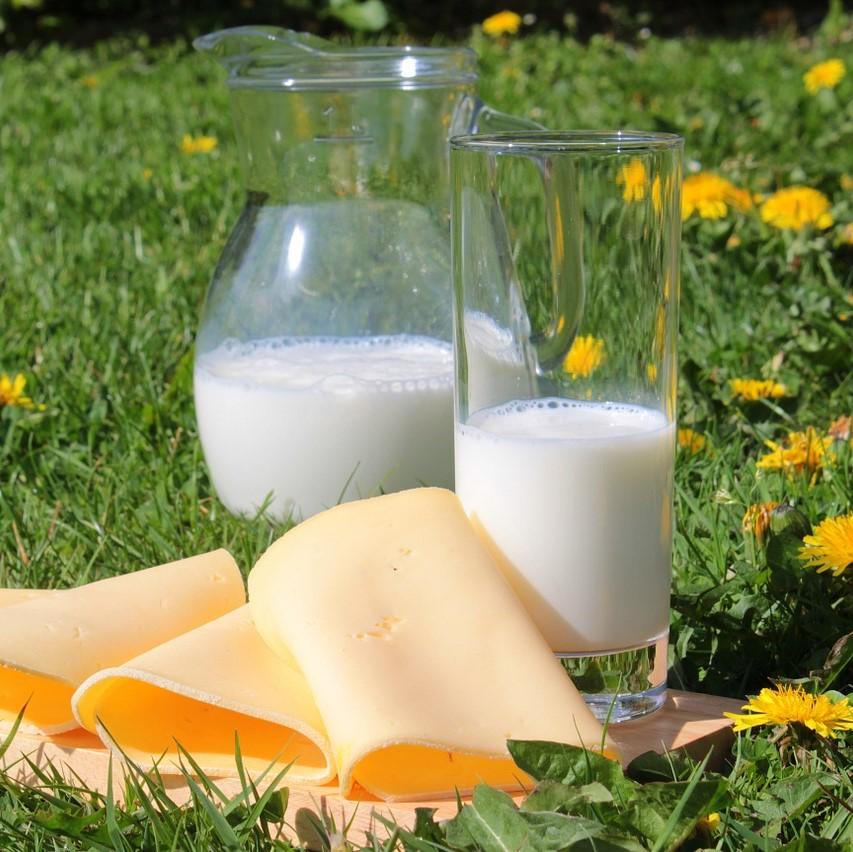 Milch und Käse